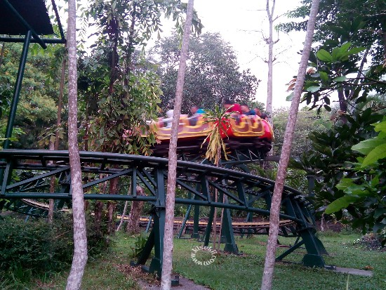 roller-coaster-taman-safari