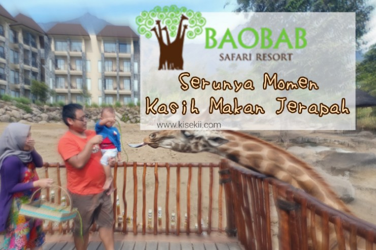 baobab-safari-resort