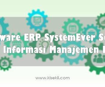 Software ERP SystemEver Solusi Sistem Informasi Manajemen Modern